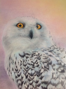 Snowy Owl In The Arctic Sky CP Online Class
