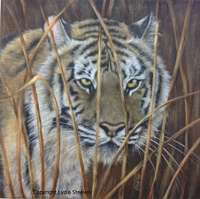Tiger In The Grass Arcylic Online Class