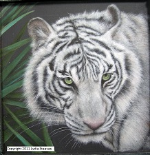 White Tiger Acrylic e-Packet