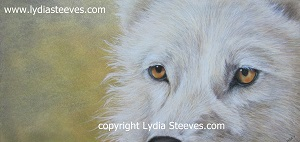 White Wolf CP e-Packet